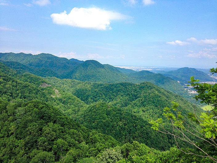 csj_openthedoor_img02b 地方暮らしに憧れる人々に贈る、東京→北海道移住エッセイ OPEN THE DOOR 第1回 大自然まで歩いて5分の都市に住む