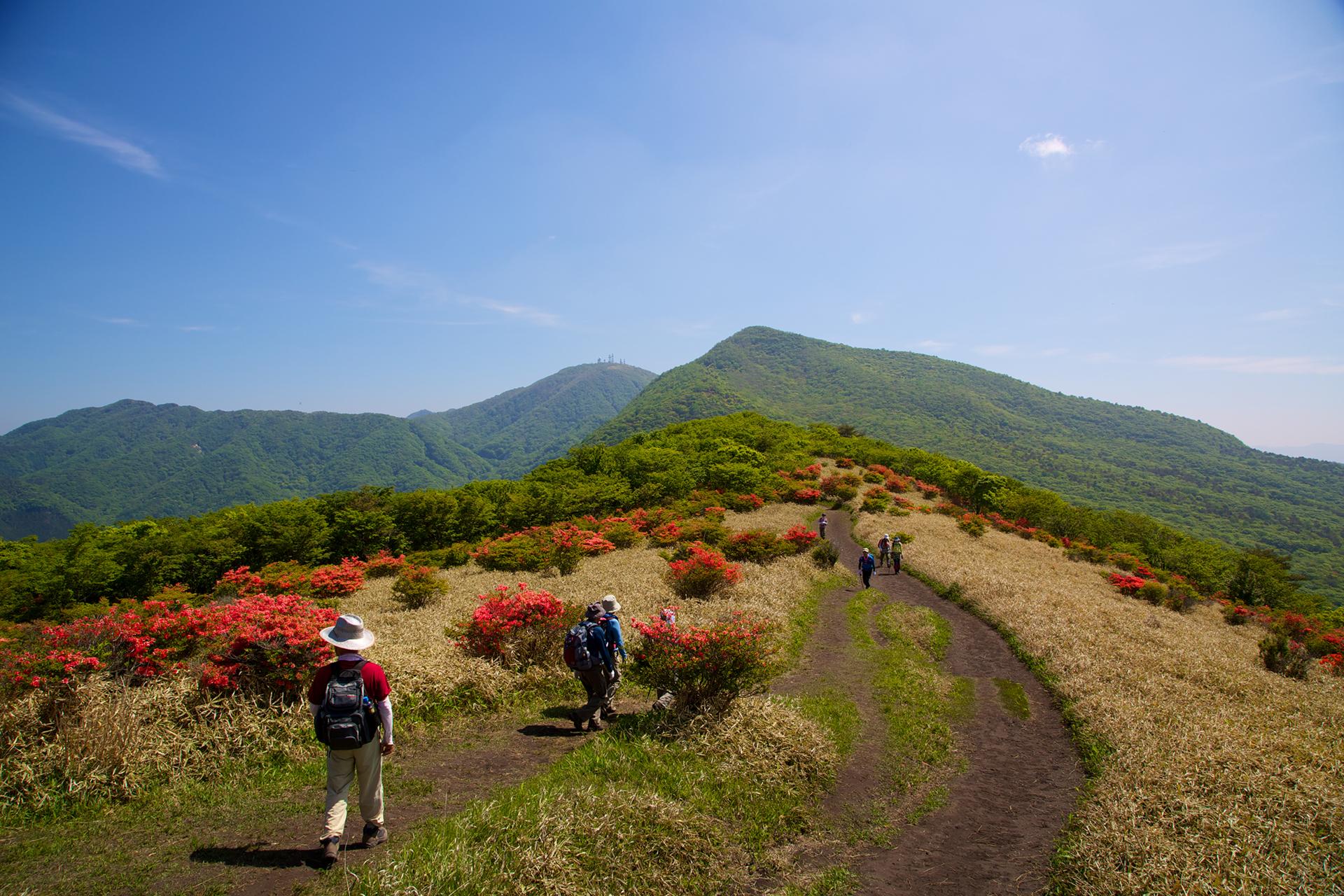07-1 ビギナーにもおすすめ!日帰りでも楽しめる関東の絶景登山・ハイキングスポット10選