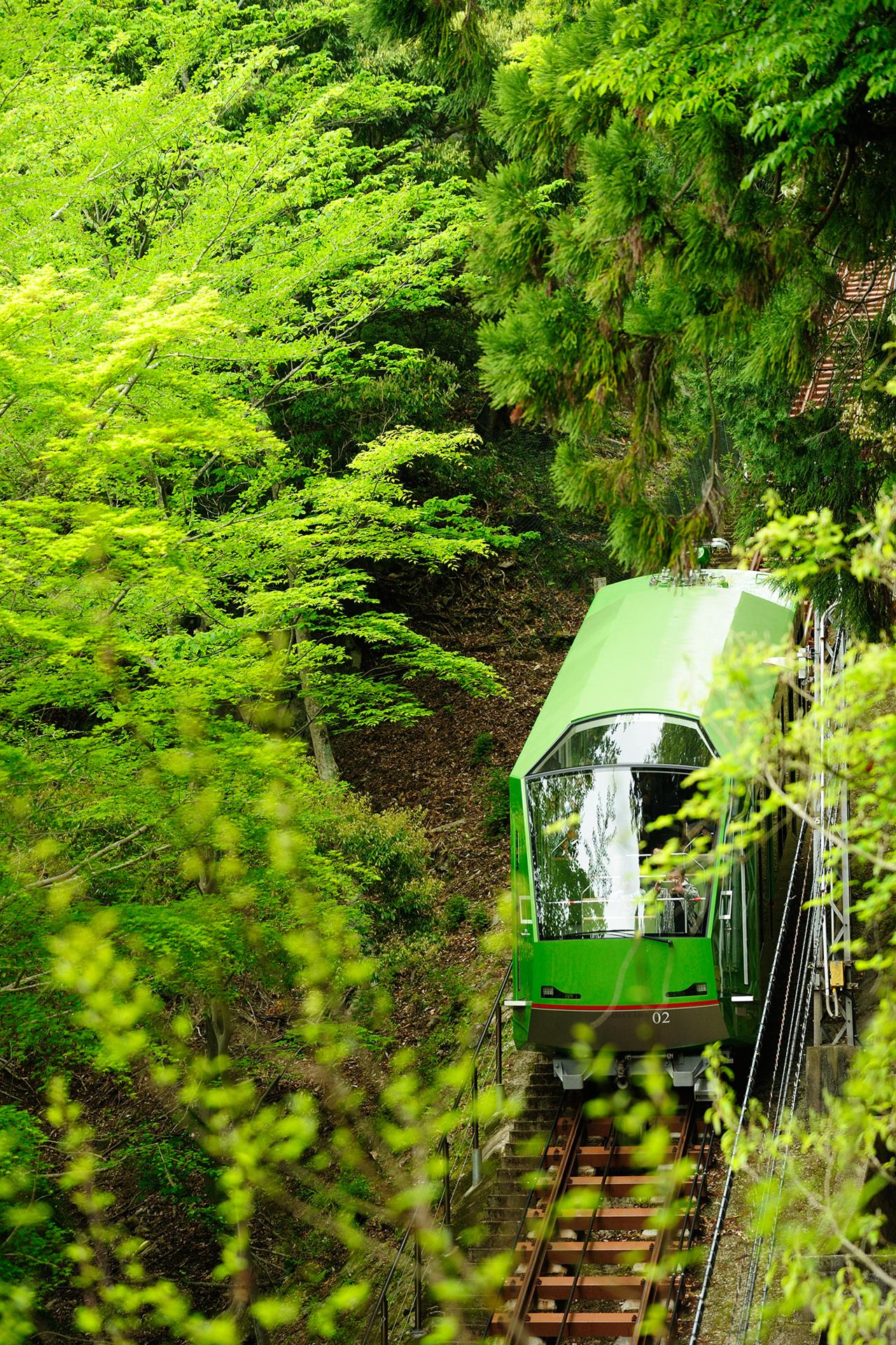 21-1 ビギナーにもおすすめ!日帰りでも楽しめる関東の絶景登山・ハイキングスポット10選
